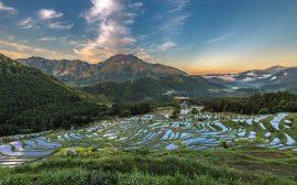 日本を旅する[三重県]丸山千枚田(まるやませんまいだ)