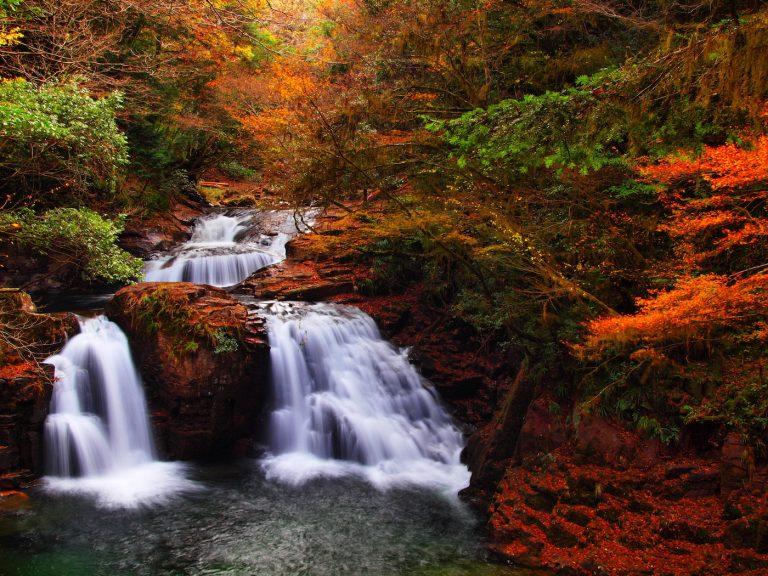 赤目四十八滝の紅葉